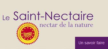 Lien site ODG Saint-Nectaire